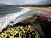 O Rostro Beach